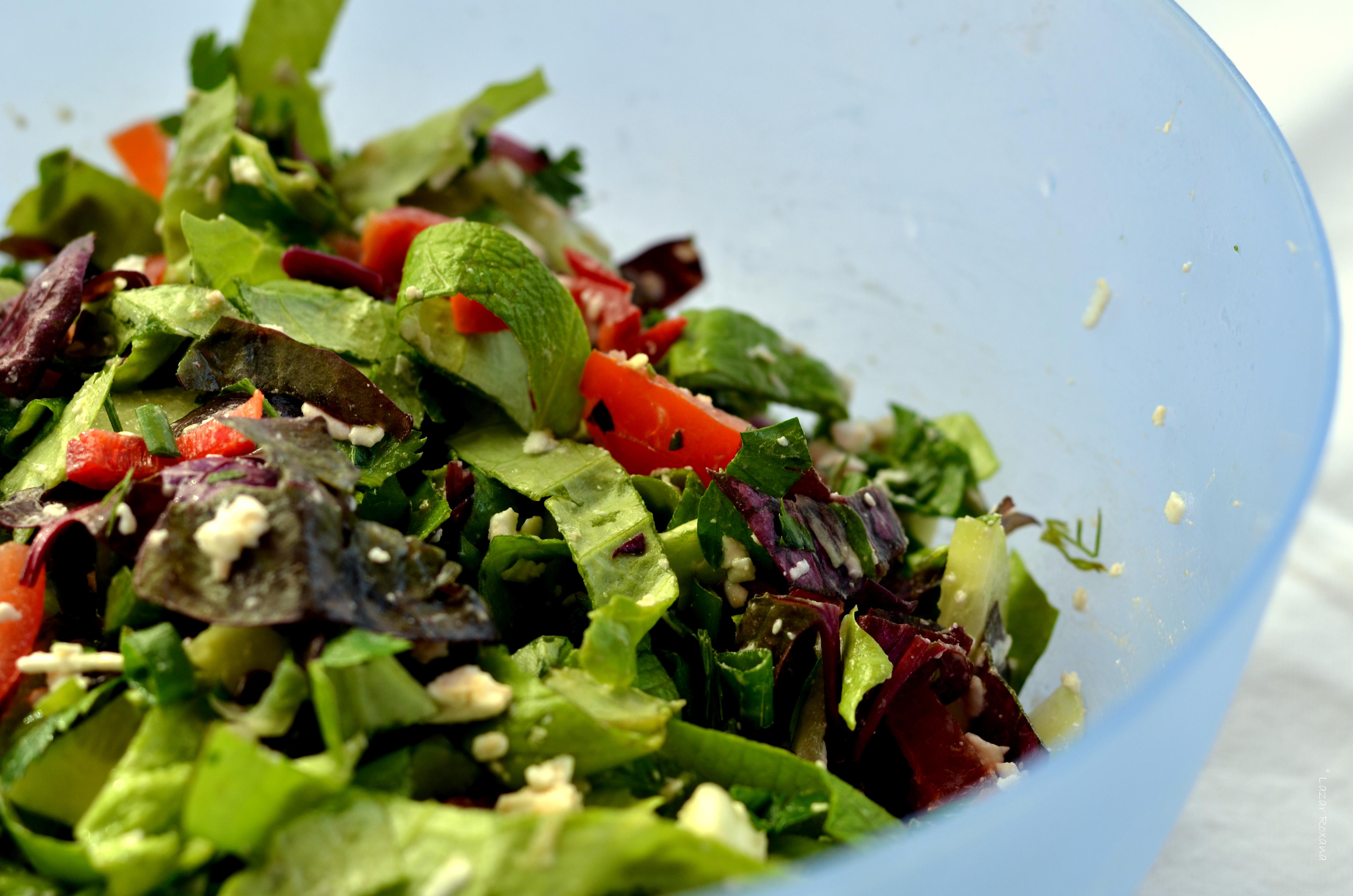 Salata de primavara cu de toate