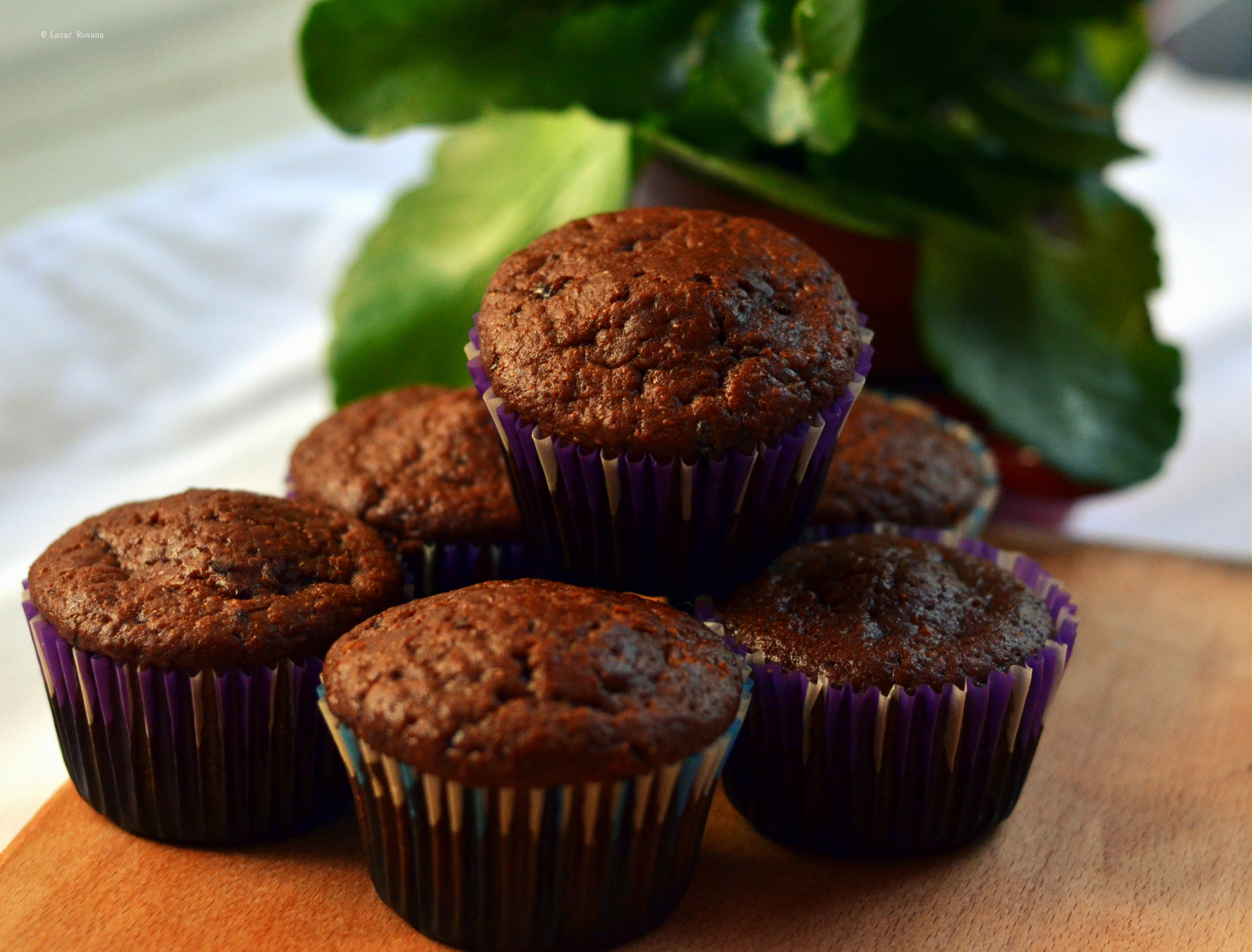 Muffins cu multa ciocolata