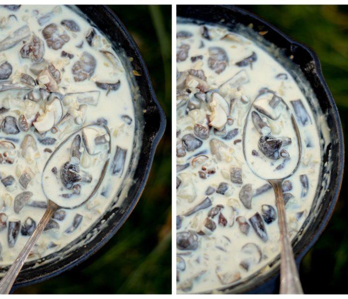 Ciulama de ciuperci de padure – varianta light, jumate lapte jumate smantana